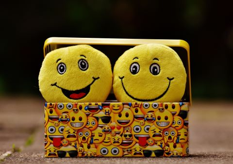 2 glückliche Smileys in einem Korb