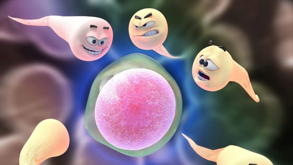 Sexualität Spermien kämpfen um eine Eizelle